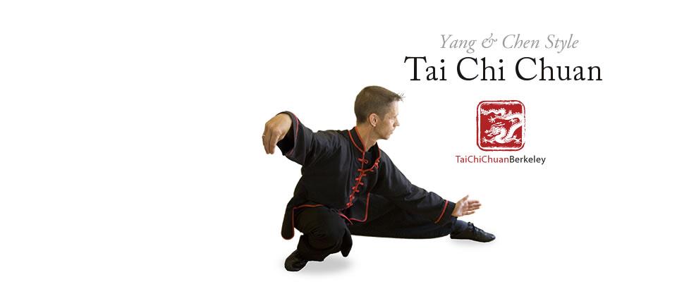 taichi-snake-creeps-down