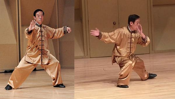 Chen Style Lao Jia Yi Lu - Chen Zhenglei